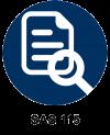 SAS 115