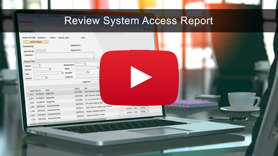 Review System Access Report